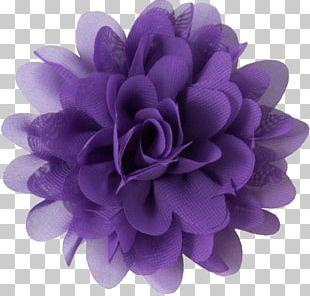 Purple Flower Violet Lavender Lilac PNG