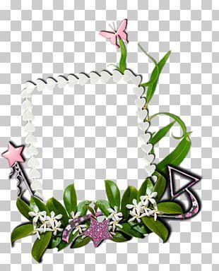 Floral Design Frames Painting Idea PNG