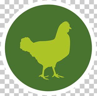 Chicken Meat Poeliersbedrijf Zeevla Red Meat PNG