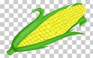 Corn On The Cob Vegetarian Cuisine Maize Open PNG
