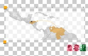 Caribbean Latin America South America Central America United States PNG
