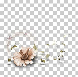 Frames Flower Drawing PNG