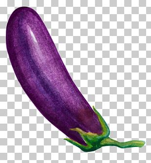 Eggplant Vegetable Cartoon PNG