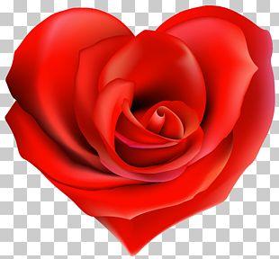Tea Garden Roses Heart Ring PNG