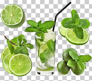 Cocktail Iced Tea Water Mint Rock Candy PNG