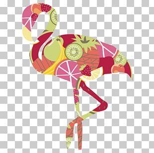 Flamingos Bird Euclidean PNG