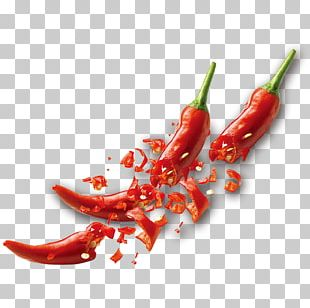 Tabasco Pepper Birds Eye Chili Serrano Pepper Cayenne Pepper Chili Pepper PNG