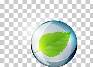 Green Leaf Circle Water PNG