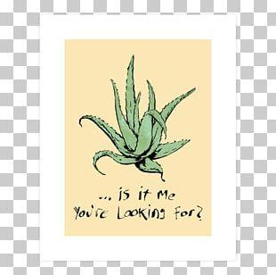 Jugo De Aloe Vera T-shirt Lotion Plant PNG