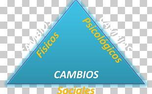 Logo Organization Line Font Triangle PNG
