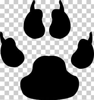 Cat Dog Paw Footprint PNG