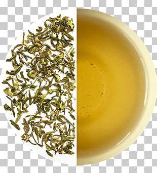 Hōjicha Darjeeling Tea Nilgiri Tea Oolong Assam Tea PNG
