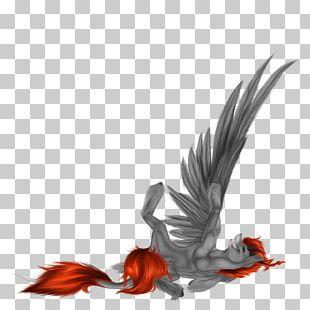 Beak Wing Feather Bird PNG