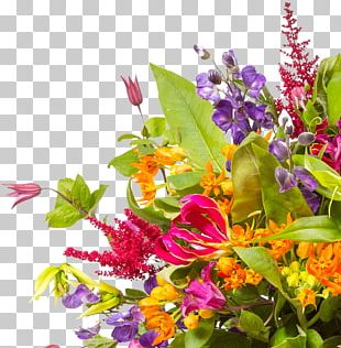 Flower Bouquet Stock Photography Cut Flowers Floristry PNG