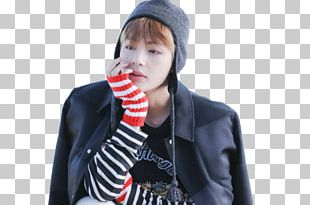 Wings BTS Blood Sweat & Tears Musician PNG