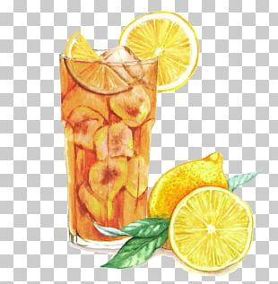 Cocktail Watercolor Painting Drawing Sloe Gin PNG