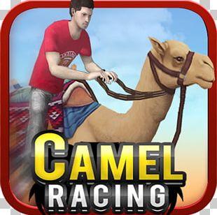 Colin McRae: Dirt Racing Video Game Stunts PNG