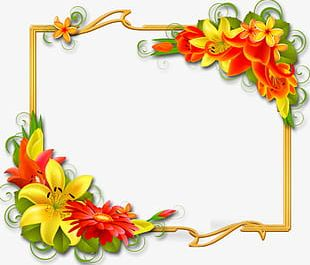 Floral Yellow Border PNG
