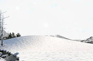 Snow Snow PNG