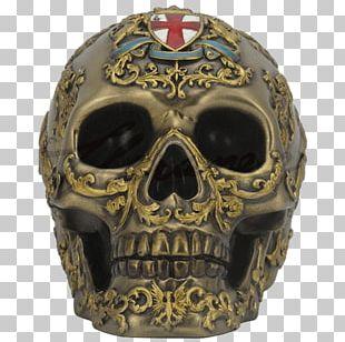 Skull Human Skeleton Anatomy Bronze Sculpture PNG