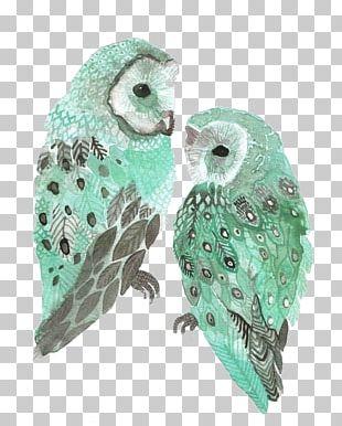 Barn Owl Bird Drawing Watercolor Painting PNG