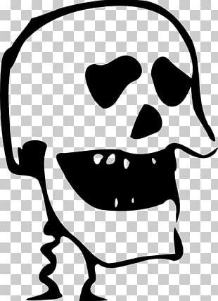 Calavera Human Skull Symbolism PNG