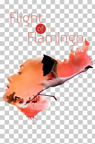 Flight Of The Flamingo Graphic Design Poster Designer PNG