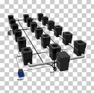 Hydroponics Current Culture H2O Deep Water Culture Plant PNG