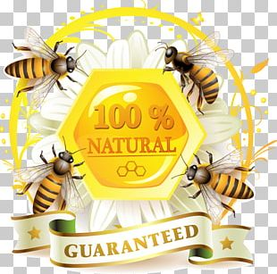 Honey Bee Honey Bee Label Honeycomb PNG