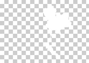 United States White Drawing Color PNG