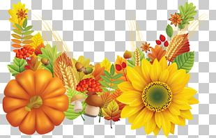 Thanksgiving Wish Greeting Card E-card PNG