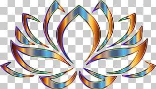 Nelumbo Nucifera Egyptian Lotus Symbol PNG