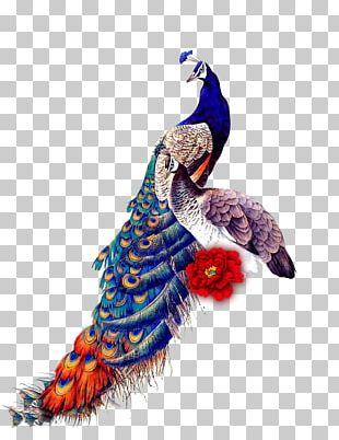 Peafowl Bird IPad Mini Samsung Galaxy J7 Glass PNG