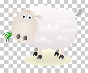 Sheep Cattle Goat Cartoon Drawing PNG