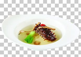 Sea Cucumber As Food Soup Caterpillar Fungus Simmering PNG