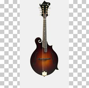 Electric Mandolin Sound Hole Musical Instruments Tonewood PNG