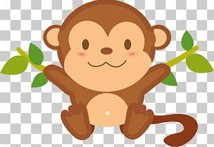 Monkey Photo Chimpanzee PNG