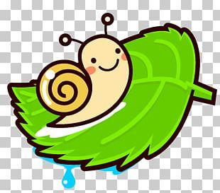 Snail East Asian Rainy Season 休暇村嬬恋鹿沢 Child PNG