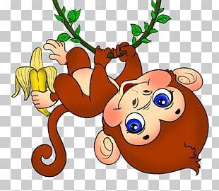 Baby Monkeys Cuteness PNG