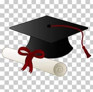 Graduation Ceremony Academic Degree Education PNG