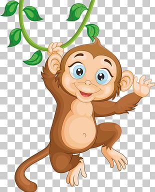Monkey Illustration PNG