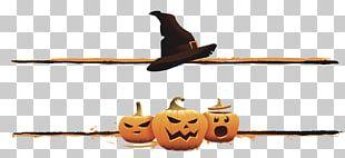 Halloween Boszorkxe1ny Jack-o-lantern Illustration PNG