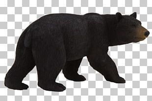 American Black Bear Amazon.com Polar Bear Toy PNG