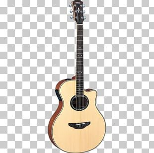 Giannini Classical Guitar Seven-string Guitar Musical Instruments String Instruments PNG