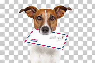 Dog Breed Letter Mail 4 Pics 1 Word PNG