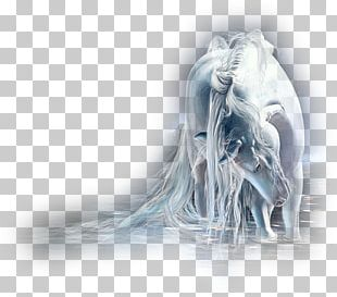 Akhal-Teke Unicorn Legendary Creature Pegasus PNG