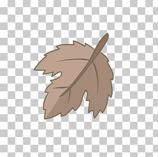 Leaf Material PNG