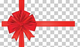 Paper Gift Ribbon Shoelace Knot PNG