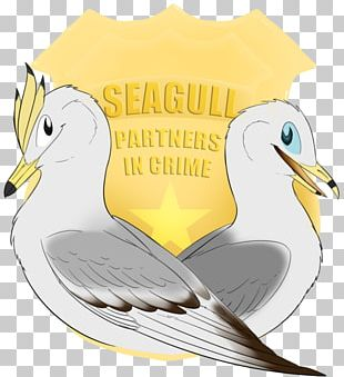 Fauna Seabird Illustration Cartoon Beak PNG