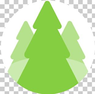 Fir Christmas Ornament Christmas Tree Spruce PNG